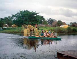 Swamp buggies